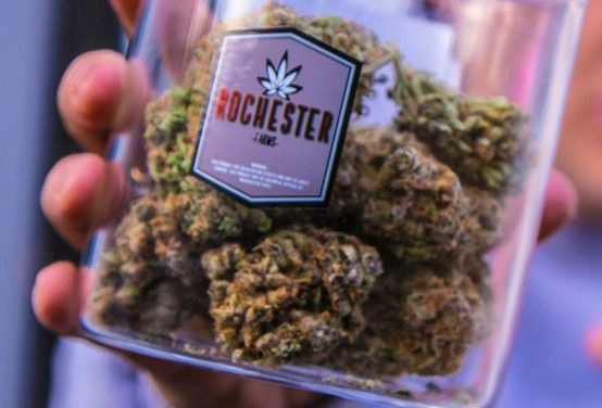 All There is to Know About Opening Up a Marijuana Provisioning Center (Dispensary) in Michigan